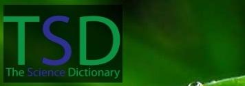 thesciencedictionary